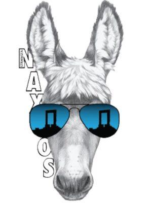 SP21 NAXOS