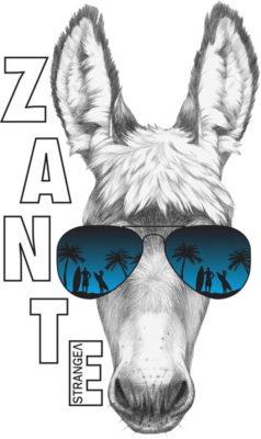 SP21 ZANTE